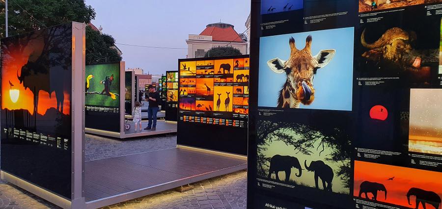 Máté Bence természetfotó-kiállítás és előadas